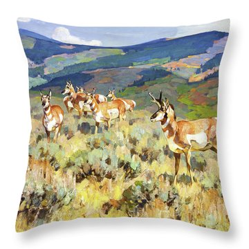 Foothills Throw Pillows