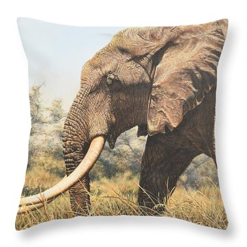 In The Footsteps Of Elders Throw Pillow