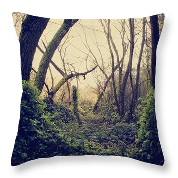 In The Forest Of Dreams Throw Pillow by Laurie Search