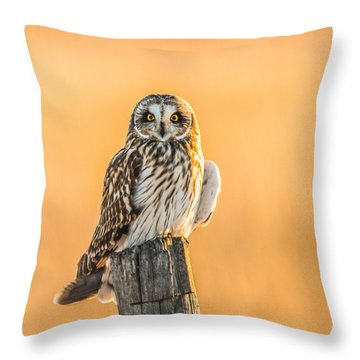 In The Glow Throw Pillow by Yeates Photography