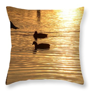 In The Golden Pool Throw Pillow by Arik Baltinester