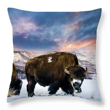 In The Grips Of Winter Throw Pillow
