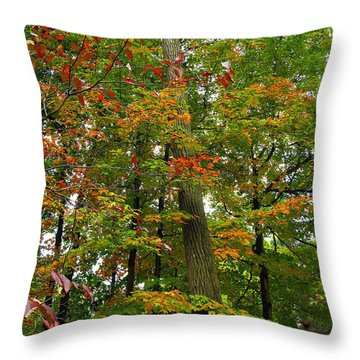 Throw Pillow featuring the photograph In The Height Of Autumn by Joan  Minchak