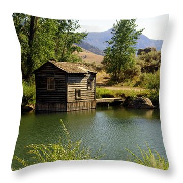 In The High Country Throw Pillow by Marty Koch