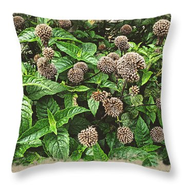 Throw Pillow featuring the photograph In The Highline Garden by Joan  Minchak