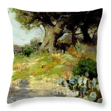 In The Hills Of Southwest Texas 1912 Throw Pillow