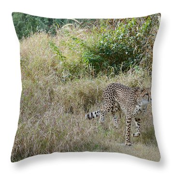 Throw Pillow featuring the photograph In The Lead by Fraida Gutovich