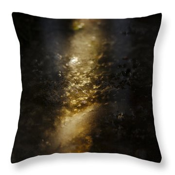 Throw Pillow featuring the photograph In The Light by Cendrine Marrouat