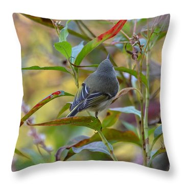 In The Light Throw Pillow by Kathy Gibbons