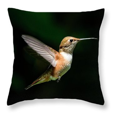 In The Light Throw Pillow
