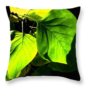In The Limelight Throw Pillow by Will Borden