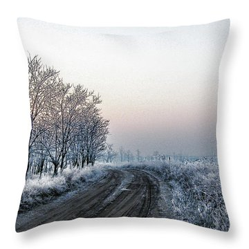 In The Lonsome Throw Pillow