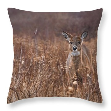 Throw Pillow featuring the photograph In The Meadow by Robin-lee Vieira