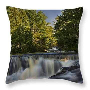 In The Middle Of The Middle Branch Throw Pillow