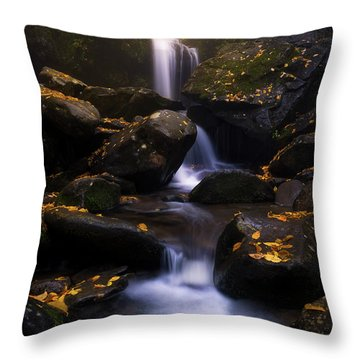 In The Mist Throw Pillow by Bjorn Burton