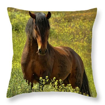In The Name Of Pride Throw Pillow