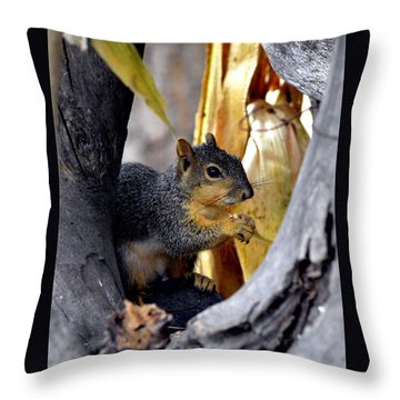 In The Niche Throw Pillow