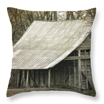 In The Niche Of Time Throw Pillow