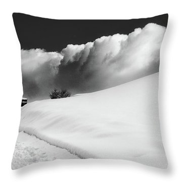 in the Ore Mountains Throw Pillow by Dorit Fuhg