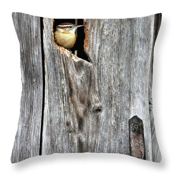 In The Outhouse Shed Throw Pillow
