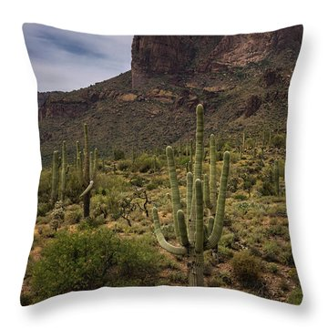 Throw Pillow featuring the photograph In The Presence Of The Supes  by Saija Lehtonen
