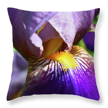 In The Purple Iris Throw Pillow