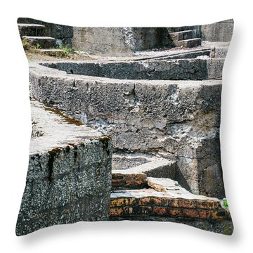 In The Ruins 6 Throw Pillow