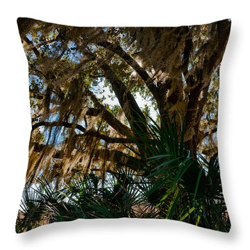 In The Shade Of A Florida Oak Throw Pillow by Christopher Holmes
