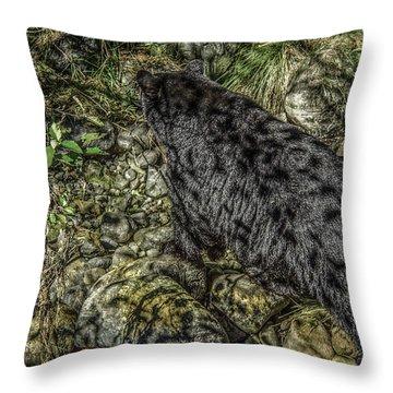 In The Shadows Black Bear Throw Pillow