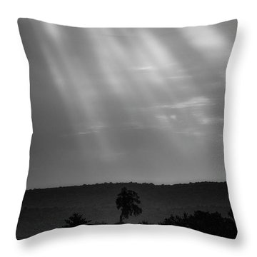 Throw Pillow featuring the photograph In The Spotlight by Bill Wakeley