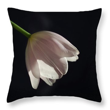 Throw Pillow featuring the photograph In The Spotlight by Kim Hojnacki