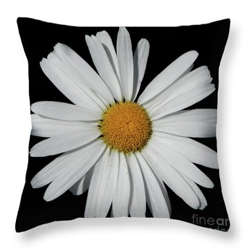 In The Spotlight White Daisy Throw Pillow