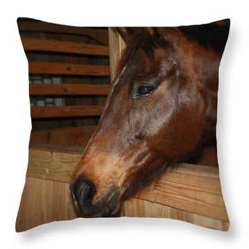 In The Stall Throw Pillow by Roena King