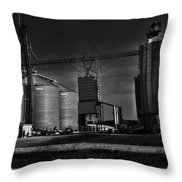 In The Still- Black And White Throw Pillow