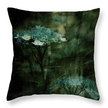 In The Still Of The Night Throw Pillow by Bonnie Bruno