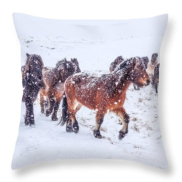 In The Storm 2 Throw Pillow