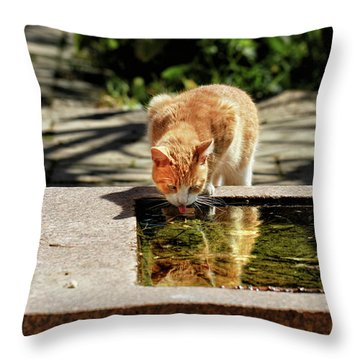 In The Summer Heat Throw Pillow by Stephan Grixti