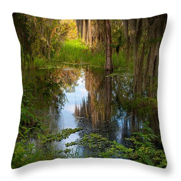 In The Swamp Throw Pillow by Carolyn Dalessandro