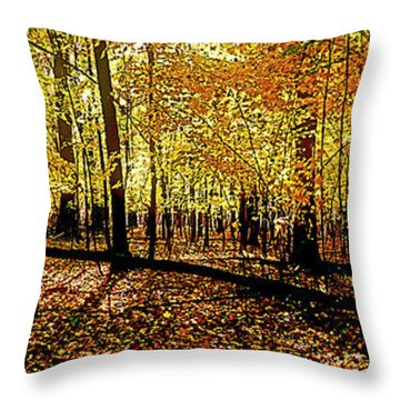 In The The Woods, Fall  Throw Pillow
