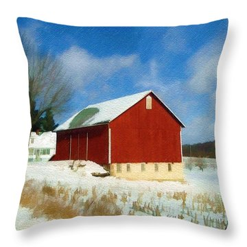 In The Throes Of Winter Throw Pillow