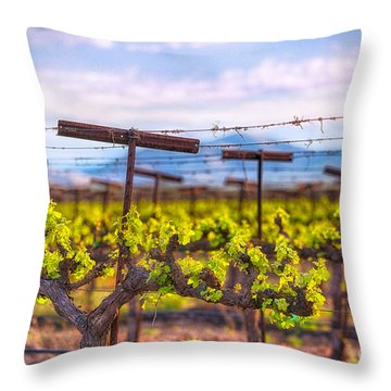 In The Vineyard Throw Pillow