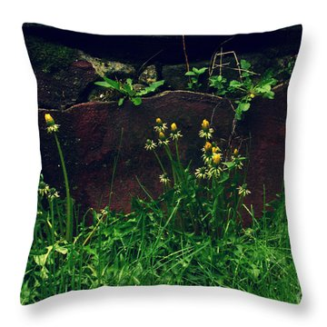 Throw Pillow featuring the photograph In The Wild by Kristine Nora
