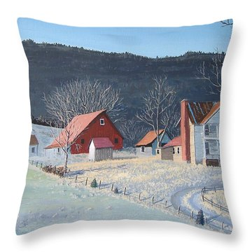 In The Winter Of My Life Throw Pillow by Norm Starks