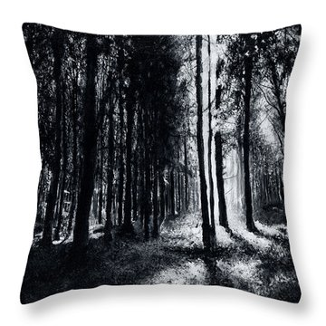 In The Woods 6 Throw Pillow