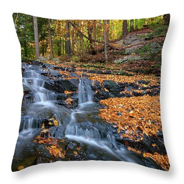 In The Woods Throw Pillow by Rick Berk