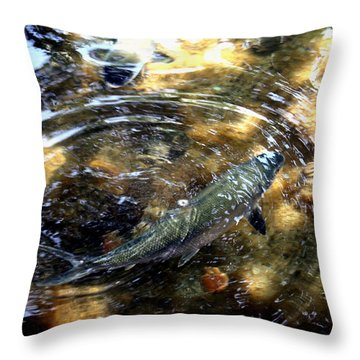 Throw Pillow featuring the photograph In The Zone by Karen Nicholson