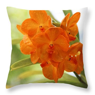 Throw Pillow featuring the photograph In This World by Michiale Schneider