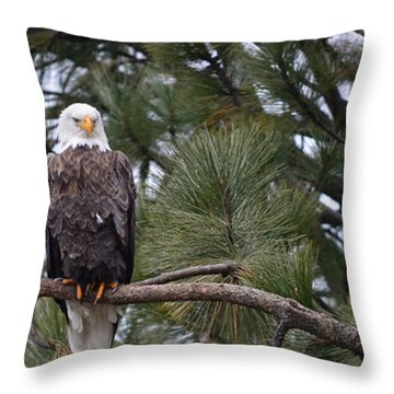 In Time Throw Pillow by Greg Patzer