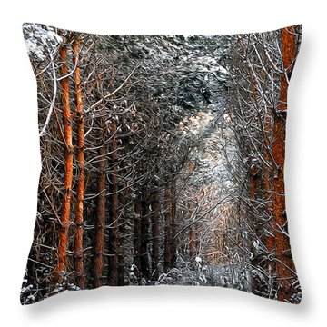 In To The Light Throw Pillow by Svetlana Sewell