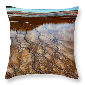 Throw Pillow featuring the photograph In Vain by Robert Pearson